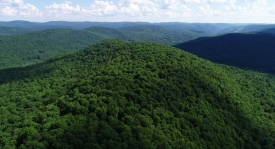 Ultimate Catskills Retreat - 416+/- Acres on 2 Parcels
