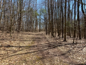 Excellent Recreation - Mostly wooded with trails, clearings