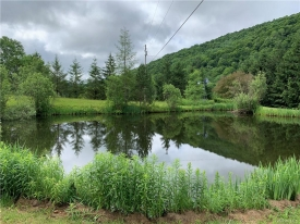 Impeccable Property Nuzzled in the CATSKILLS  - Private Spring Fed Ponds