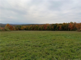 MUST see Land Property in CATSKILLS - .