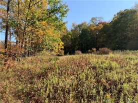 LAND opportunity in the CATSKILLS - .